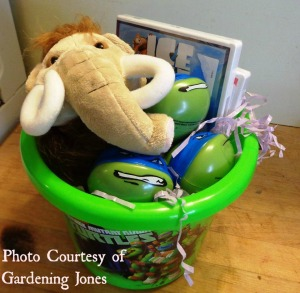 sprouts EAster basket